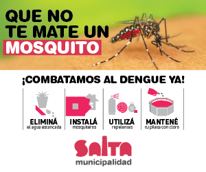 banners-dengue-02.png