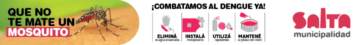 banners-dengue-03.png