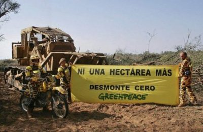 greenpeacedesmonte